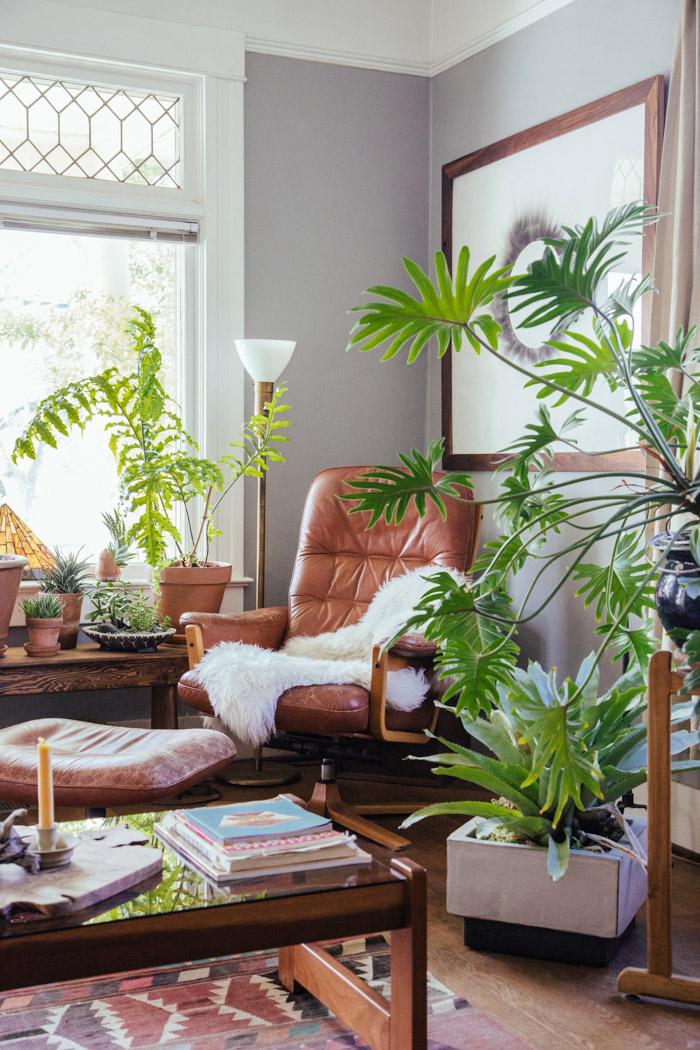 decoracao-referansblog-plantas-madeira-11